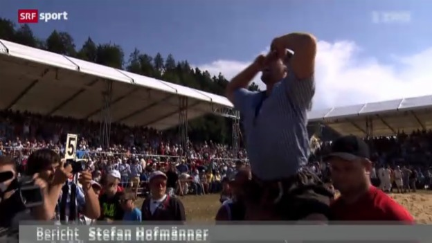 Video «Schwingen: Bernisch-Kantonales Schwingfest in Niederscherli» abspielen