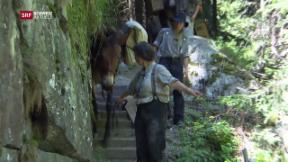 Video «Tag 2: Steckengeblieben auf dem Säumerpfad» abspielen