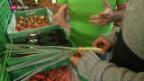 Video ««Die Idee»: Retter des nicht-normierten Gemüse» abspielen