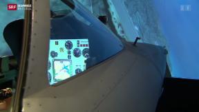 Video «Flugsimulator demonstriert Notmanöver» abspielen