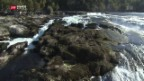 Video «Kaum Wasser im Rheinfall» abspielen