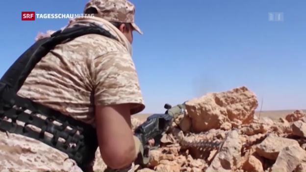 Video «Waffen für Libyen sollen kein Tabu mehr sein» abspielen