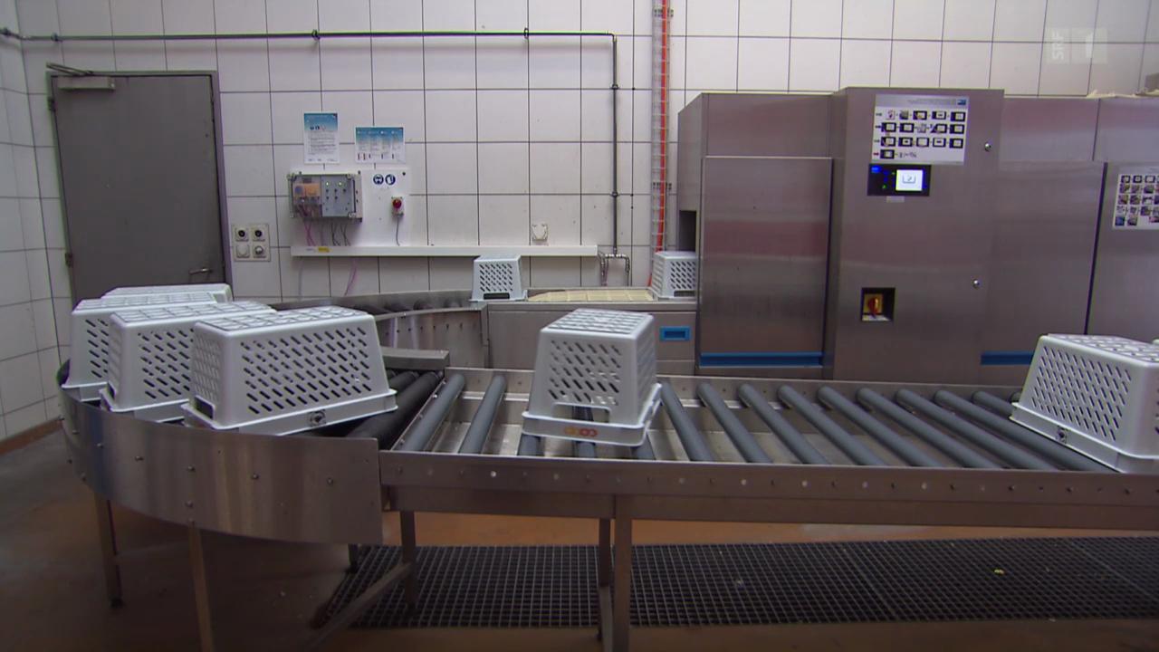 Einkaufskörbli-Waschmaschine