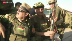 Video «IS-Terror: Diskussion um Waffenlieferungen » abspielen