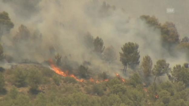 Video «Feuer bedroht die Wälder Mallorcas» abspielen