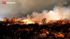 Video «Explosion in texanischer Düngerfabrik» abspielen