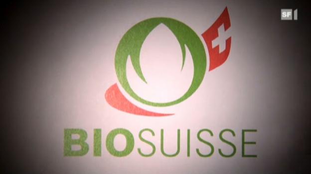 Video «Gefälschte Bio-Produkte in der Schweiz» abspielen