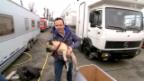 Video «Claudio Zuccolini und sein neuer, frecher Freund» abspielen