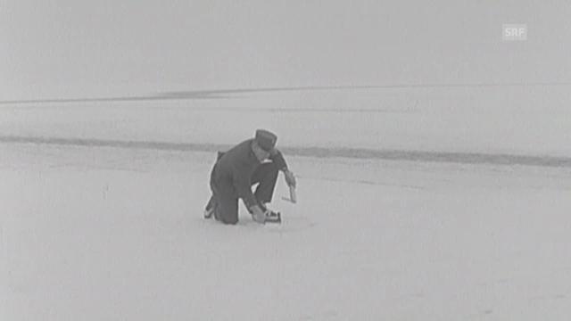 Seegfrörni Bodensee im Jahr 1963. (Antenne vom 18.02.1963)