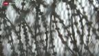 Video «FOKUS: Festung Europa» abspielen
