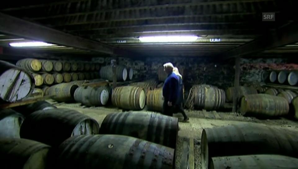 Einblick in die Schottische Whisky-Produktion