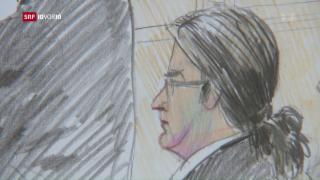 Video «Fall Hildebrand vor Gericht» abspielen