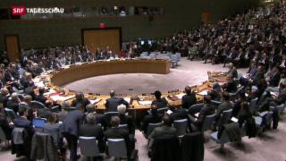 Video «Uno-Resolution für einen Friedensplan in Syrien» abspielen