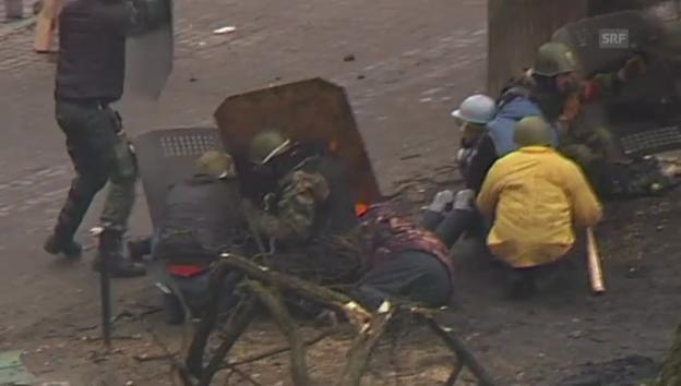 Video «Viele Tote nach Schüssen am Maidan (unkomm.)» abspielen