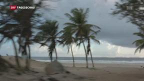 Video «Das legale Paradies» abspielen