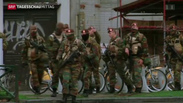 Video «Terroralarm in Brüssel» abspielen