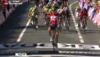 Video «Tony Gallopin Sieger der 11. Etappe» abspielen