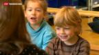 Video «Berset wirbt für Verfassungsartikel zu Familienpolitik» abspielen