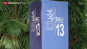Video «Einigung der WTO» abspielen