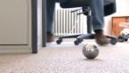 Video «Ist Pétanque gefährlich?» abspielen