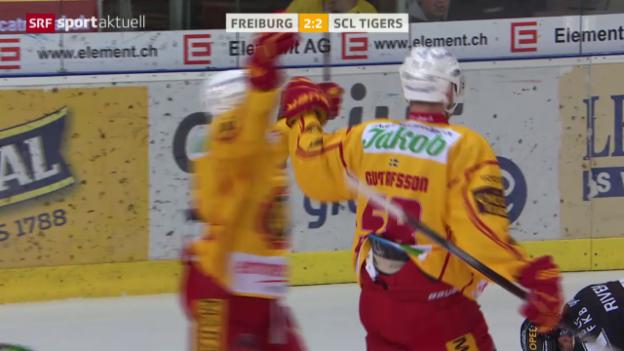Video «Rostislav Olesz letzter Treffer für die SCL Tigers» abspielen