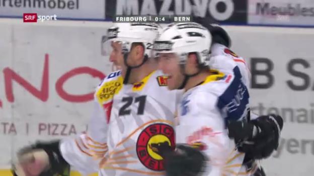Video «Eishockey: NLA, 38. Runde, Fribourg-Bern» abspielen
