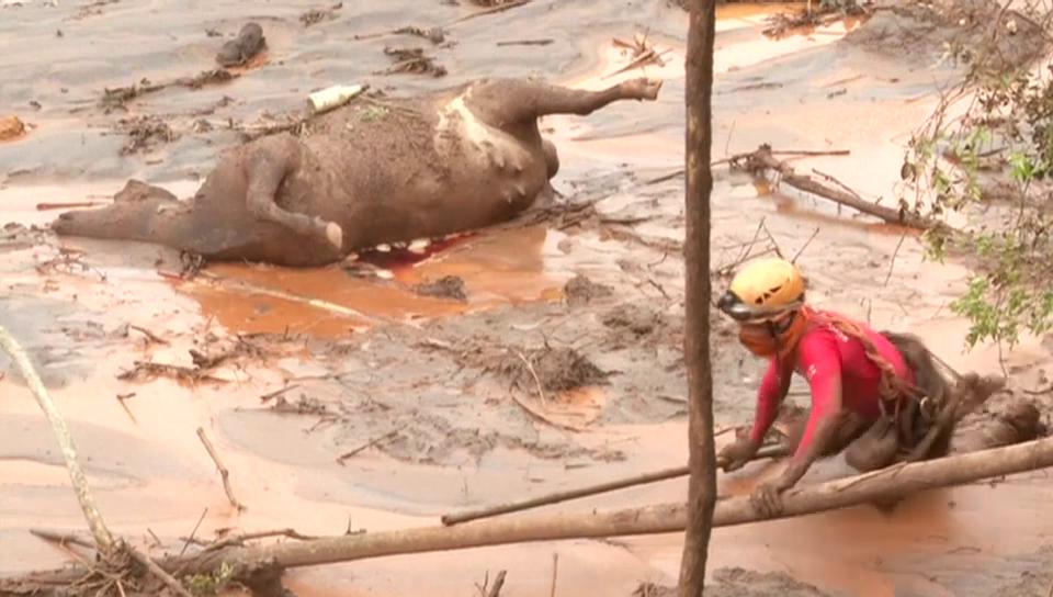 Aufräumarbeiten nach Dammbruch