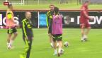 Video «Spanien zittert, die Niederlande sind schon fast weiter» abspielen