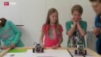 Video «Fachkräftemangel im Kanton Schaffhausen?» abspielen
