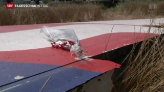 Video «Empörung über den Abschuss der MH17 wächst » abspielen
