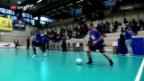 Video «Minerva holt sich im Futsal den Meistertitel» abspielen
