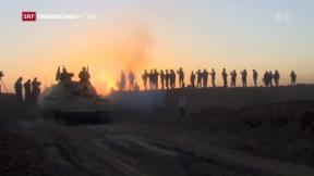Video «Kampf um Mossul» abspielen