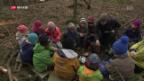 Video «Waldschule – Lernen in der Natur» abspielen