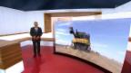 Video «Remo Stoffels Projekte   Milliardengeschäft mit Hybrid-Weizen» abspielen
