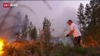 Video Waldbrände ausser Kontrolle abspielen.
