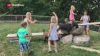 Video «Wie Bauernhoftiere Kinder vor Asthma schützen» abspielen