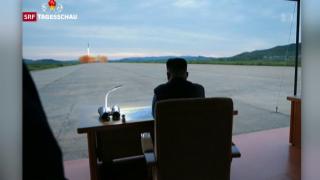 Video «Nordkoreas Wille zur Abrüstung in Frage gestellt» abspielen