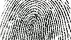 Video «Fingerabdruck-Scanner statt Passwort» abspielen