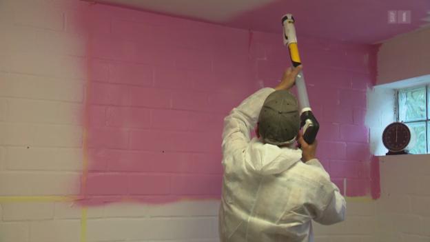 Video «Farbsprühgeräte im Test: Besser als der Malerroller?» abspielen