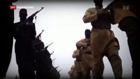 Video «Referendum gegen das Nachrichtengesetz» abspielen