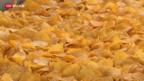 Video «Goldene Zeiten für Zweifel-Chips» abspielen