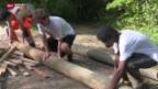 Video «Anschauungsunterricht für lernschwache Schüler» abspielen