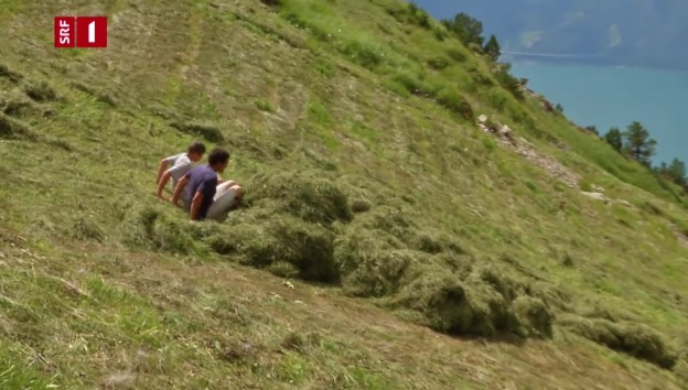 Video ««DOK» – So einzigartig wie das Leben» abspielen