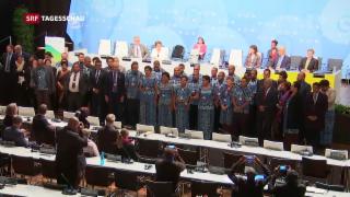 Video «Ende der Klimakonferenz» abspielen