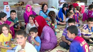 Video «Verzweifelte Lage im Irak» abspielen