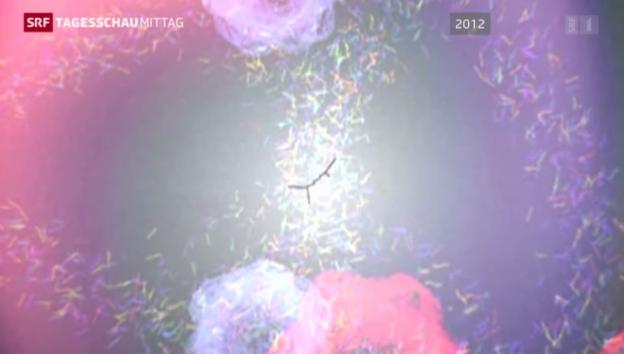 Video «60 Jahre CERN» abspielen