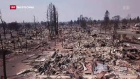 Video «Weitere Tote bei Bränden in Kalifornien befürchtet» abspielen