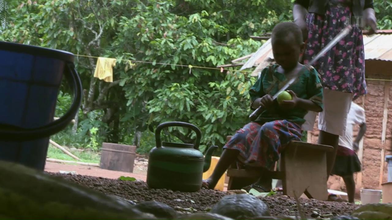 Schokolade und Kinderarbeit: Ein ungelöstes Problem