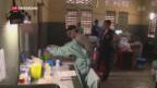 Video «WHO meldet Durchbruch bei Ebola-Impfung» abspielen