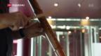 Video «Reibung erzeugt Musik» abspielen